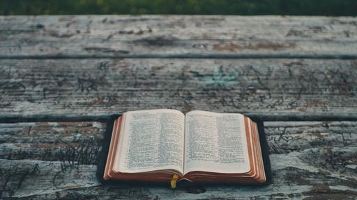 Many Americans want to read the Bible more