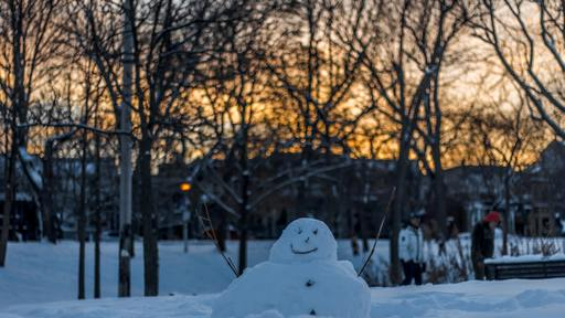 Olaf's summer song reflects limited scope of our wishes