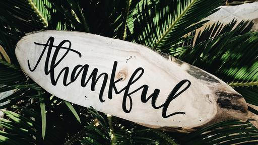 Gratitude For What You Have