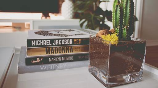 Michael Jackson Was Worshipped by His Fans
