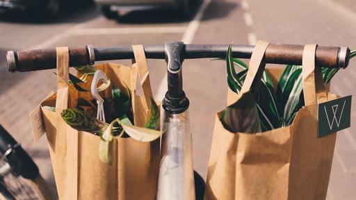 Plastic Bags are dangerous