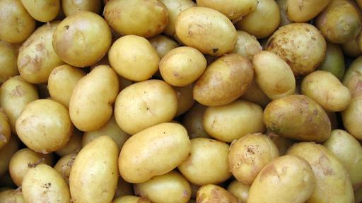 Potatoes grow in the deserts of Columbia