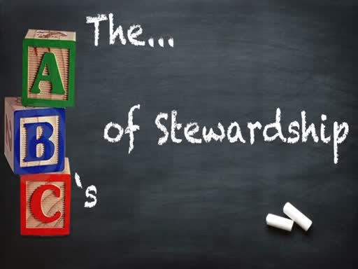 Sunday, January 27, ATTITUDE - The Response of a Succesful Steward