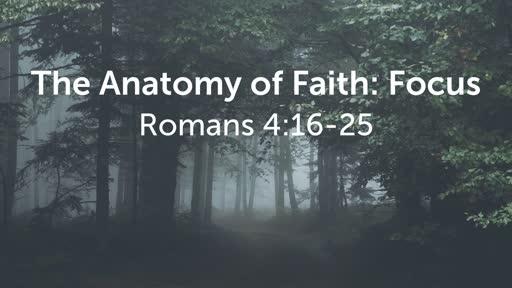 The Anatomy of Faith: Focus