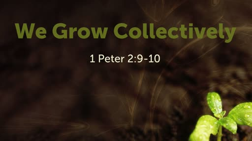We Grow Collectively