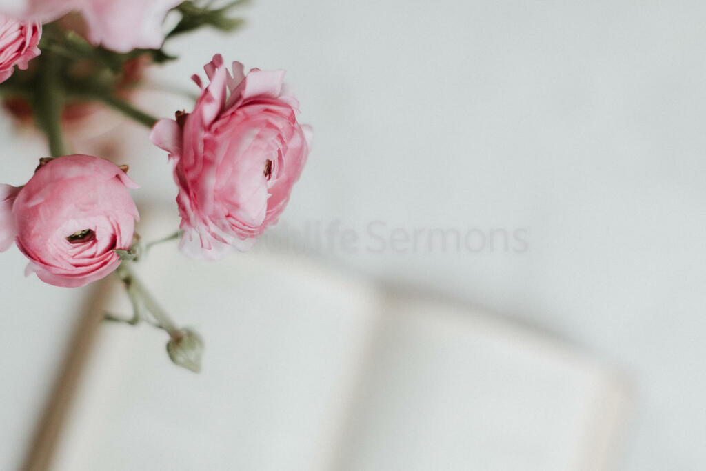 Flowers on Bible large preview