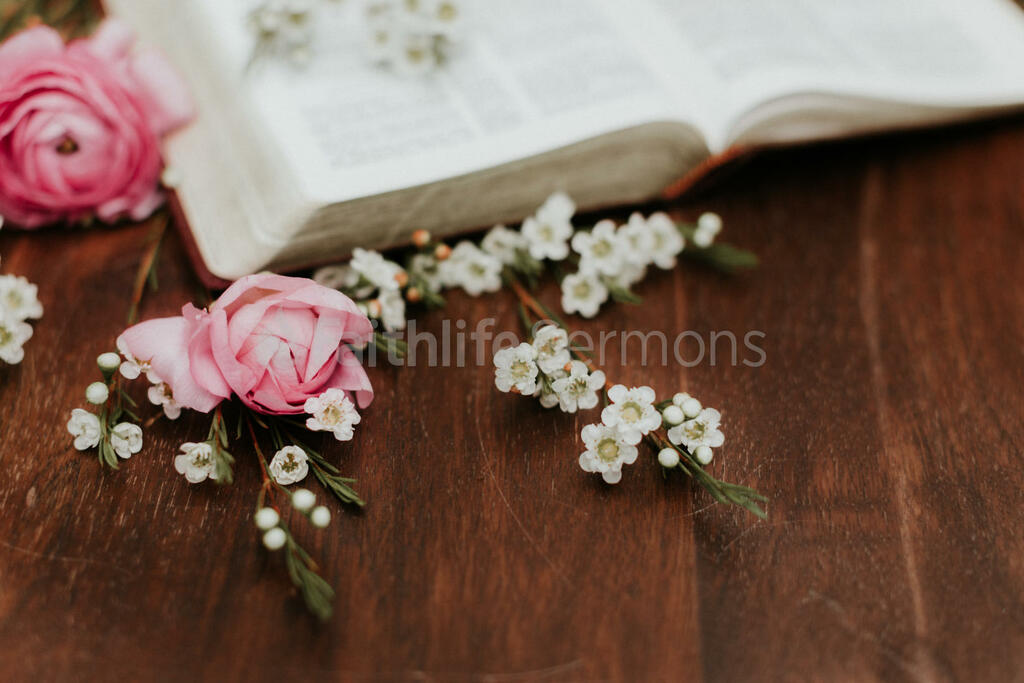Flowers on Bible pink roses and white wax with open 16x9 67134df1 6fd1 4d7b acf4 9bb18414f1c7 preview