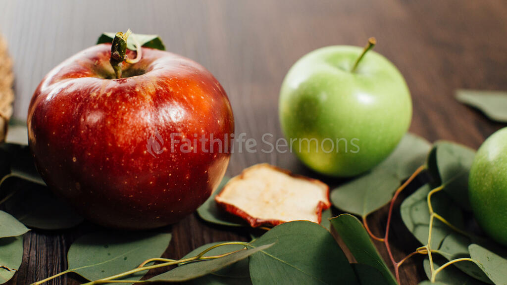 Fall Feast two apples 16x9 05ff6a8c d357 42d3 9f96 b242ca5f1a13 preview