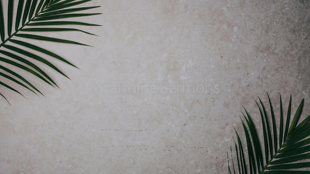 Palm Branches 16x9 11f68625 ac75 43ff 9f3f bf4b9dbcfc8e preview