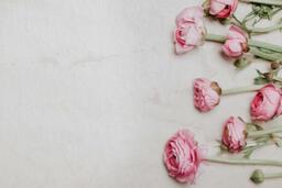 Flowers  image 2