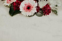 Flowers  image 5