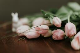 Flowers  image 7