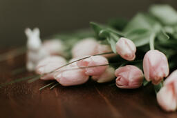 Flowers light pink tulips on brown wooden table 16x9 c5f13358 ef45 4038 920d 184ff5cd1ac3 PowerPoint image