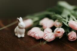 Flowers  image 8