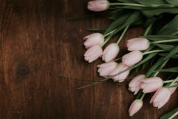 Flowers light pink tulips on brown wooden table 16x9 6b227276 477c 4239 bbd1 f80aab4c7578 PowerPoint image