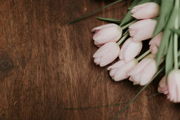Flowers light pink tulips on brown wooden table 16x9 807343ab ce09 4d71 9983 819df83d3011 PowerPoint image