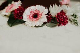 Flowers  image 10