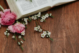 Flowers on Bible  image 1