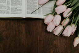 Flowers on Bible  image 3