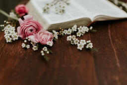 Flowers on Bible  image 2