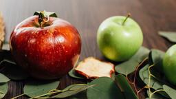 Fall Feast  image 1
