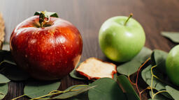 Fall Feast two apples 16x9 05ff6a8c d357 42d3 9f96 b242ca5f1a13 image