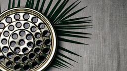 Communion Palm Branches  image 1