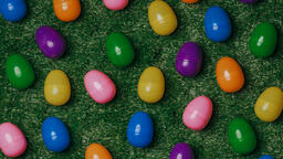 Colorful Eggs with Flowers  image 3