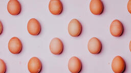 Colorful Eggs with Flowers  image 1