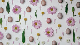 Colorful Eggs with Flowers purple easter flatlay 16x9 48760bd5 fbe2 4c92 96ff ee3a8471e995 image
