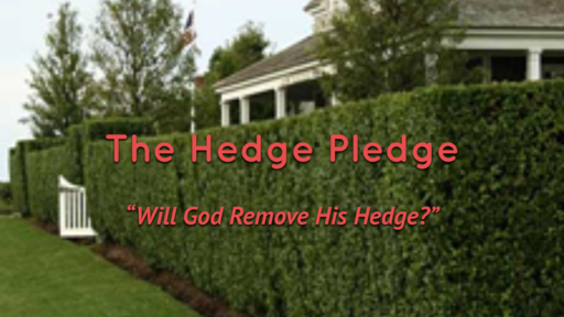 "The Hedge Pledge -""Will God Remove His Hedge?"""