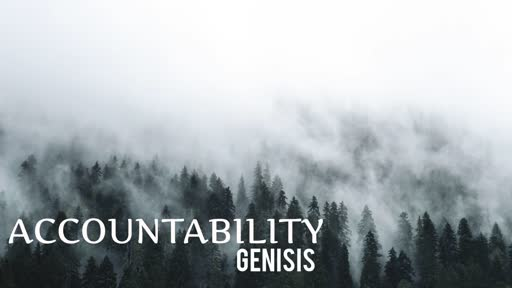 Accountability Genisis