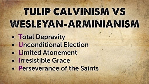 TULIP Calvinism vs Wesleyan-Arminianism