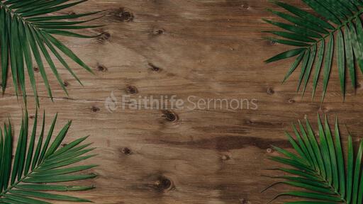 Palm Leaves Wood