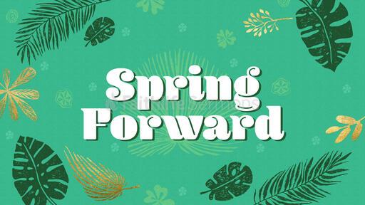 Spring Forward Time