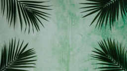 Palm Leaves Green sunday 16x9 2554596f 3b80 4334 b663 2c98d3208b72 PowerPoint image