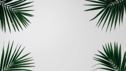 Palm Leaves White sunday 16x9 9284db2d a95d 4d56 a701 b97f57d862ea PowerPoint image