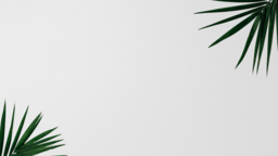 Palm Leaves White content a PowerPoint image