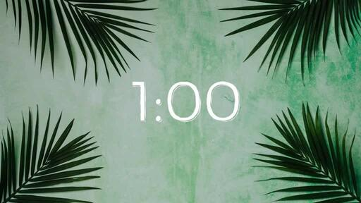 Palm Leaves Green - Countdown 1 min