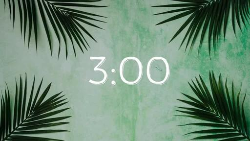 Palm Leaves Green - Countdown 3 min