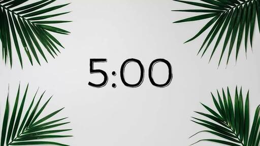 Palm Leaves White - Countdown 5 min