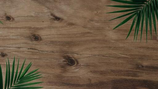 Palm Leaves Wood - Content - Motion