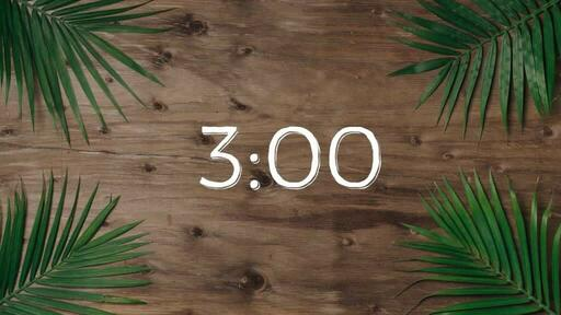 Palm Leaves Wood - Countdown 3 min