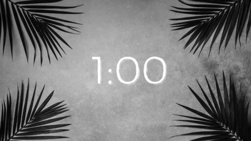 Palm Leaves Grey - Countdown 1 min