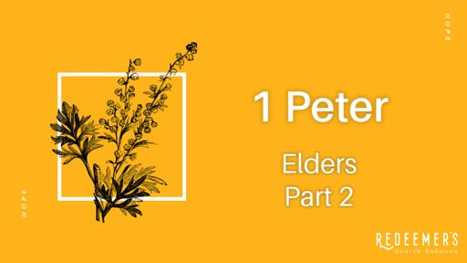 Elders Part 2