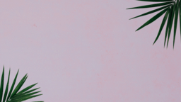 Palm Leaves Pink sermon title 16x9 f4a635f4 0b23 41b8 89b2 d5bd2afaec91 PowerPoint Photoshop image
