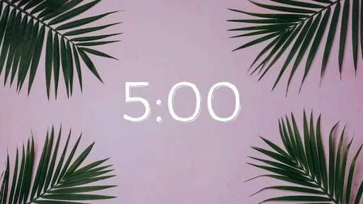 Palm Leaves Pink - Countdown 5 min