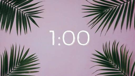 Palm Leaves Pink - Countdown 1 min