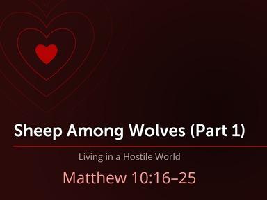 Sheep Among Wolves, A Hostile World (Mt. 10.16-25)
