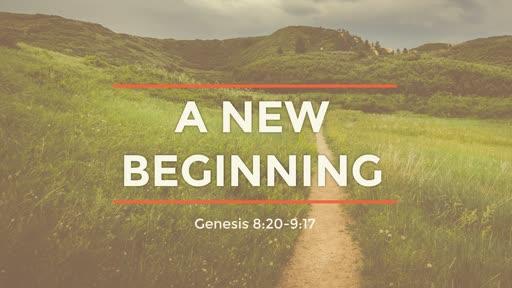 Genesis 8:20-9:17 // The New Beginning